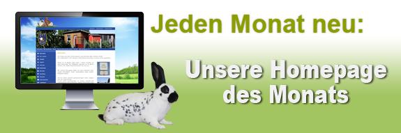 Homepage des Monats